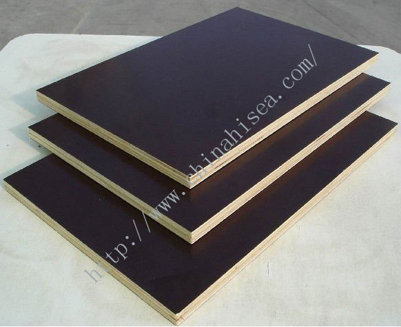 Brown Poplar Core Building plywood Templates