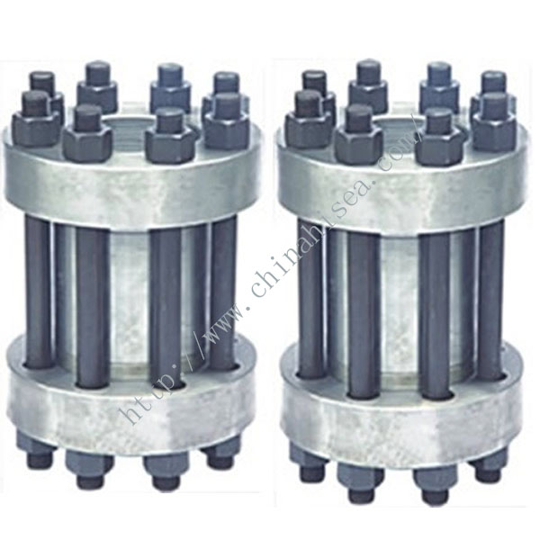 Wafter High Pressure Check Valve
