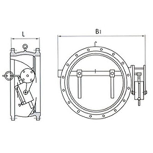 Butterfly Type Non-slam Check Valve Working Theory