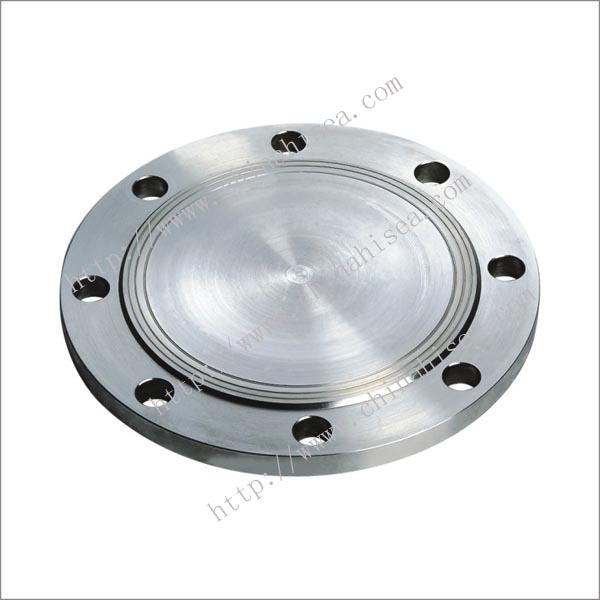 stainless-steel-blind-flanges-sample.jpg
