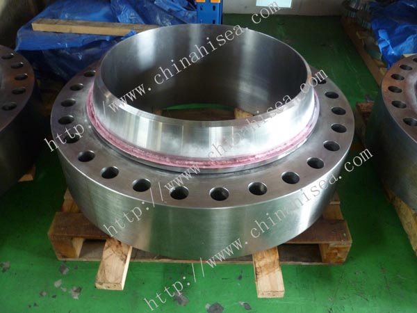 Stainless-steel-Swivel-Ring-Flanges-store.jpg
