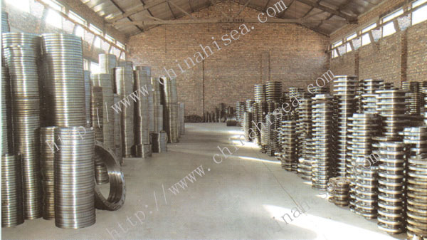 stainless-steel-ring-joint-flanges-store.jpg
