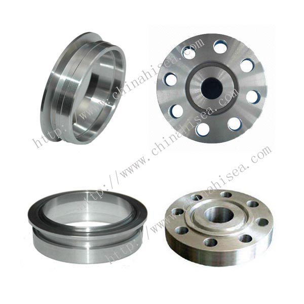 Stainless Steel O Ring Flange