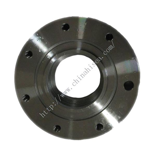 A234 Carbon Steel SW Flanges