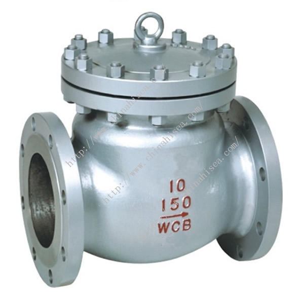 Chemical Industry Check Valve
