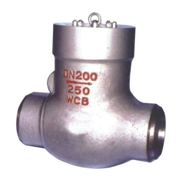 Power Station Non-return Valve